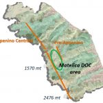 Matelica DOC and DOCG